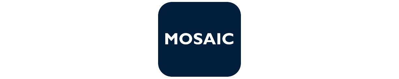 Shop mosaic