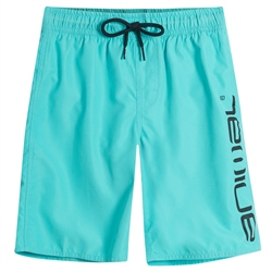 Animal Tannar Boardshorts - Pacific Blue