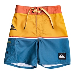 Quiksilver Everyday Division Boardshorts - Stellar