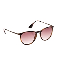 Animal Spotlight Sunglasses - Brown