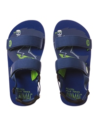Animal Bodhy Flip Flops - Blue
