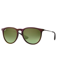Ray-Ban Erika Sunglasses - Assorted