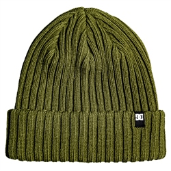 DC Shoes Fish N Destroy Beanie - Green