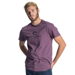 Rip Curl Peak Icon T-Shirt - Purple