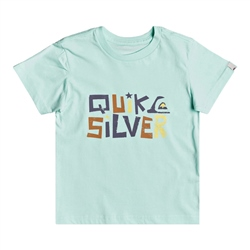 Quiksilver Bigger Picture T-Shirt - Beach Glass