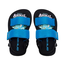 Animal Bodhy Boys Flip Flop - Black