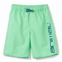 Animal Tannar Boys Boardshorts - Freeze Green