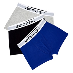 Animal Sound 3 Pack Boxers - Assorted