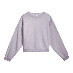 Levi's Diana Sweatshirt - Heather Lavender Frost