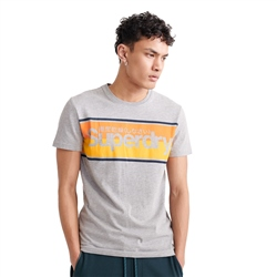 Superdry Core Logo Stripe T-Shirt - Grey Marl