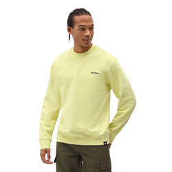 Dickies Loretto Sweatshirt - Mellow Green