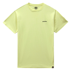 Dickies Loretto T-Shirt - Mellow Green