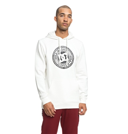 DC Shoes Circle Star Hoody - White  - Click to view a larger image
